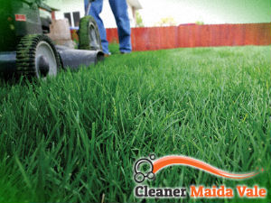 grass-cutting-services-maida-vale
